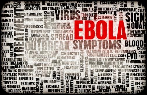 U.S. action increasing as Ebola threat grows