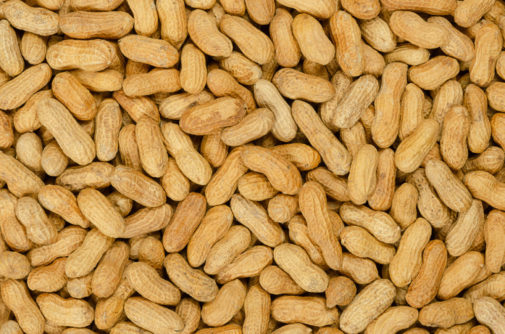 Treating a food allergy with the allergen